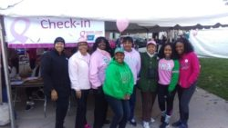 2015-Making-Strides-2-resized-for-web